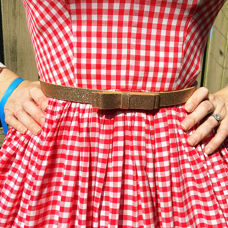 Apple Pie - The Dressed Aesthetic (vintage gingham dress)