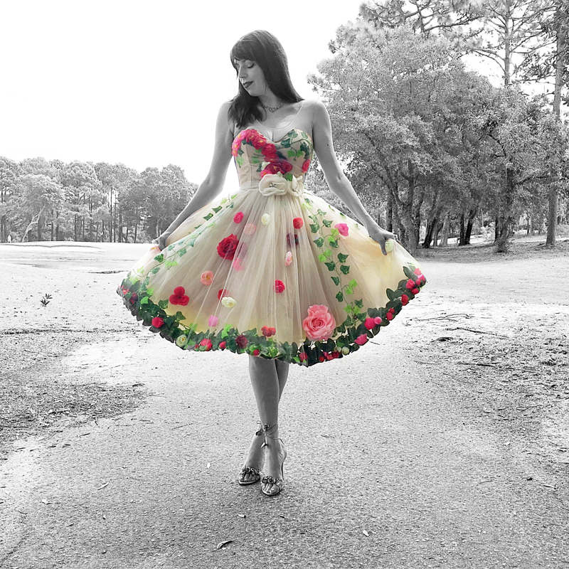 The Fairytale - The Dressed Aesthetic